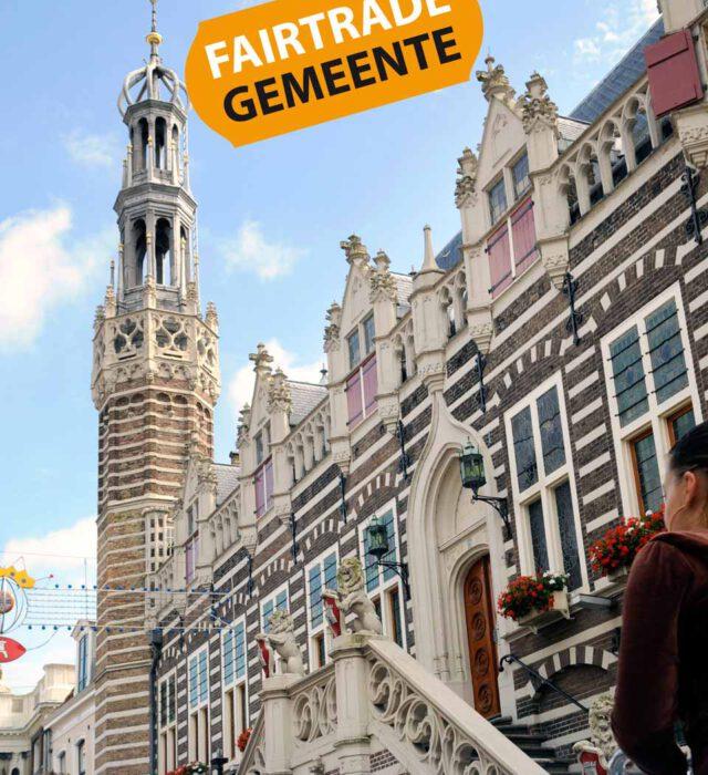 Afbeelding voor Alkmaar